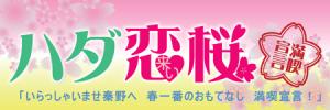 秦野市ハダ恋桜キャンペーン参加中